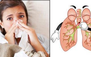 imagen Los mejores remedios naturales para tratar la bronquitis