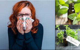 imagen Aceites esenciales para combatir la tos y la congestión nasal